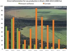 Brazil's Soy Moratorium Reduced Amazon Deforestation